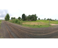 13 rai + Farm Land for sale  8k from the centre of Nang Rong