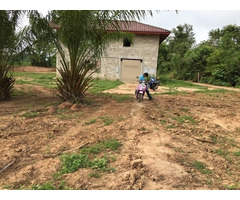 4 plots of Land total 26.2 rai   in LAO, Vientiane Province
