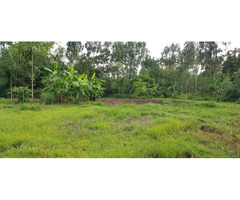 Land Is Aranyaprathet Province SAKEO