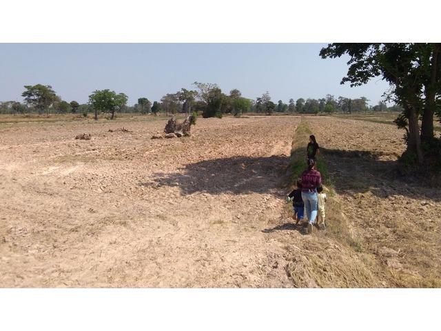 3 + Rai in Prasat, Surin Province