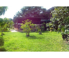 Options 1 To 6 Buriram House And Land For Sale Or Rent