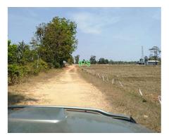 Surin Province 41 rai Farmland for sale.
