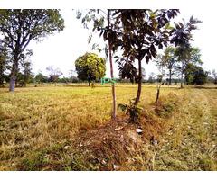 Prasat >> Level 4 Rai 1 Ngan Land
