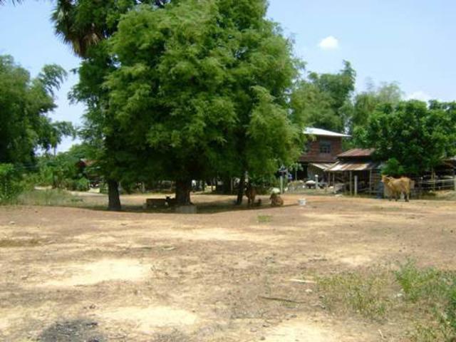 Building Plot Buriram