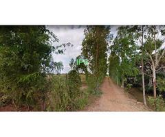 9+  Rai of Land for sale in a Buriram Village