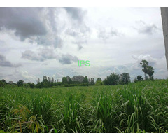 29+ of Village Land 34km North of Buriram